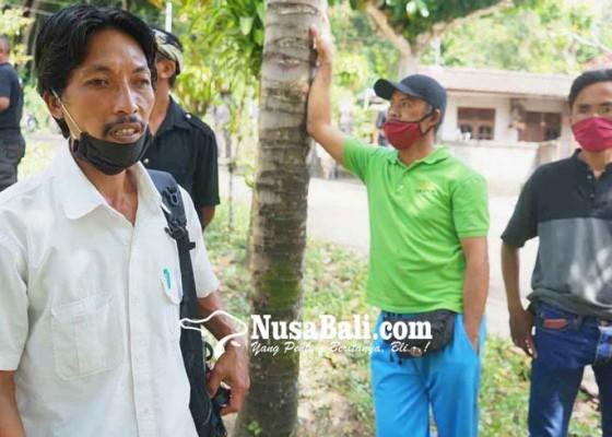 Nusabali.com - warga-kedampal-kesulitan-air