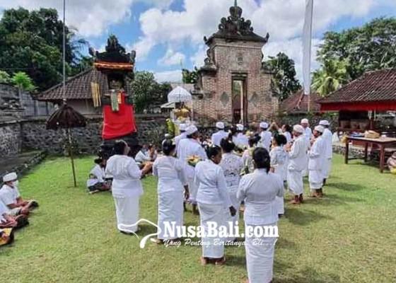 Nusabali.com - usaba-dalem-di-padangkerta-pamedek-muspa-bergilir