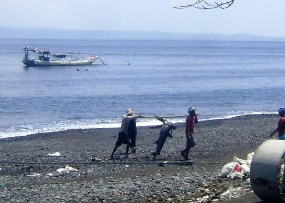 Nusabali.com - perairan-membaik-nelayan-panen-hiu-lontek