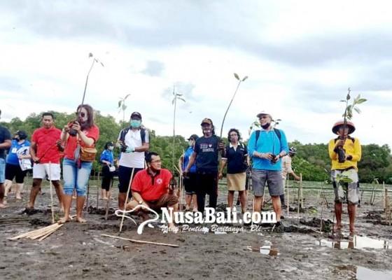 Nusabali.com - antisipasi-abrasi-krama-kedonganan-tanam-2500-mangrove