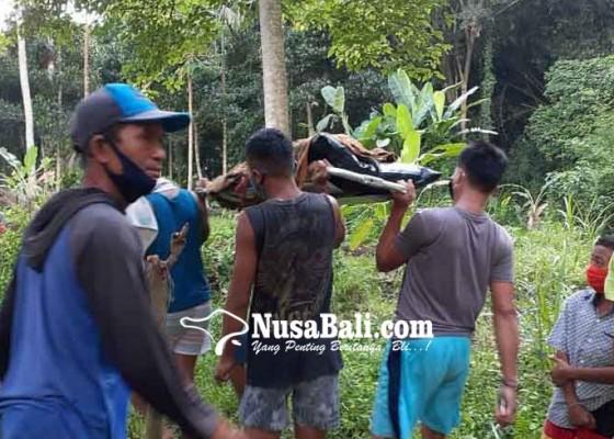 Nusabali.com - tukang-suwun-pasar-galiran-tewas-cebur-diri-ke-tukad-unda