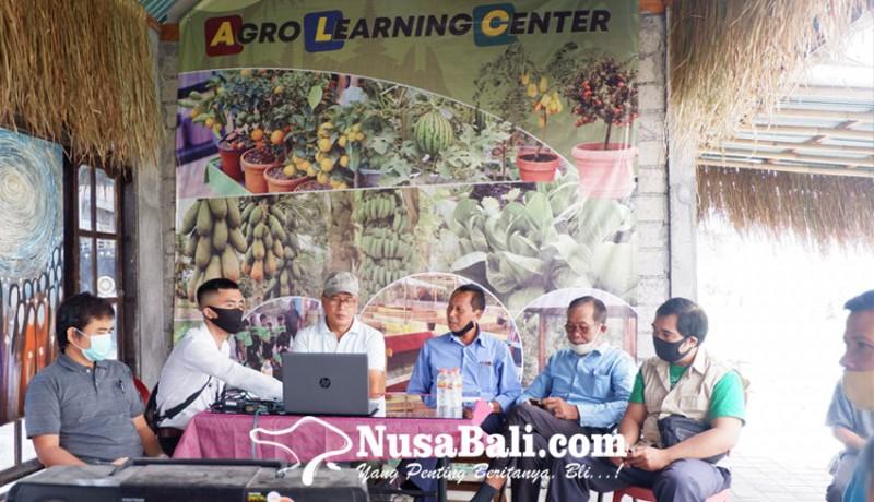 www.nusabali.com-ketahanan-pangan-di-indonesia-apa-solusinya
