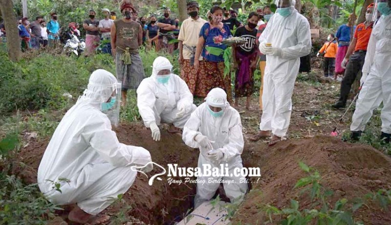www.nusabali.com-ibu-positif-corona-bayi-dalam-kandungannya-meninggal