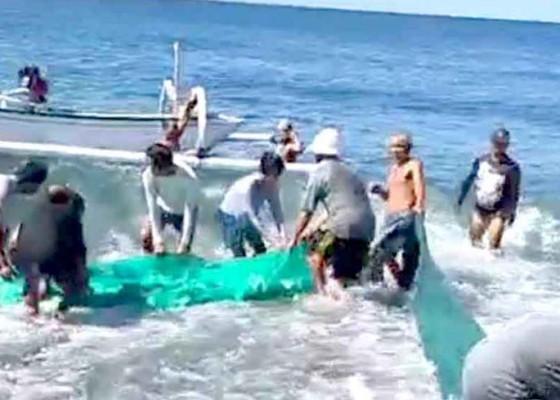 Nusabali.com - tinggalkan-jenazah-di-setra-warga-tangkap-ikan-ke-pantai