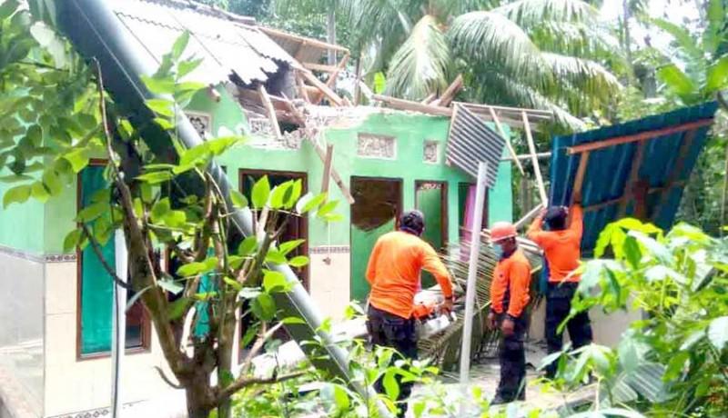 www.nusabali.com-kelapa-tumbang-timpa-rumah