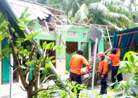 Nusabali.com - kelapa-tumbang-timpa-rumah