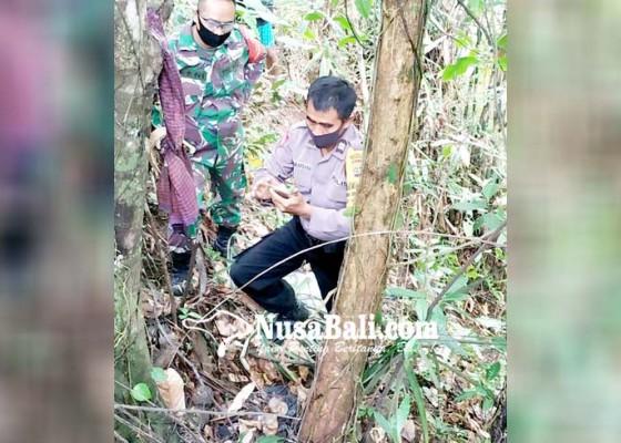 Nusabali.com - misteri-tulang-belulang-di-sibanggede-terungkap