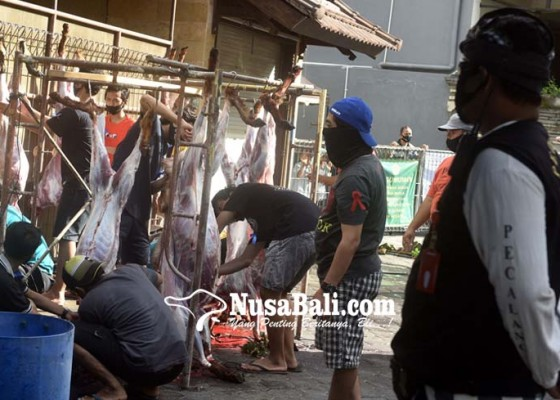 Nusabali.com - ldii-bali-potong-hewan-kurban-di-24-titik-di-bali