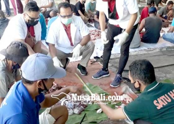 Nusabali.com - pemkab-gratiskan-biaya-pemotongan-hewan-kurban-di-rph