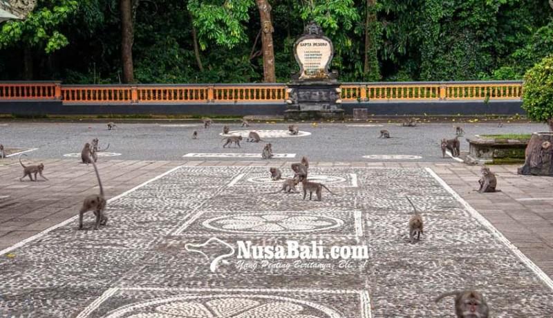 www.nusabali.com-dtw-alas-kedaton-tambah-wahana-baru