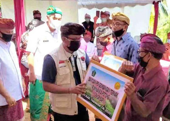 Nusabali.com - petani-dan-peternak-di-tabanan-digelontor-bantuan-dari-pusat