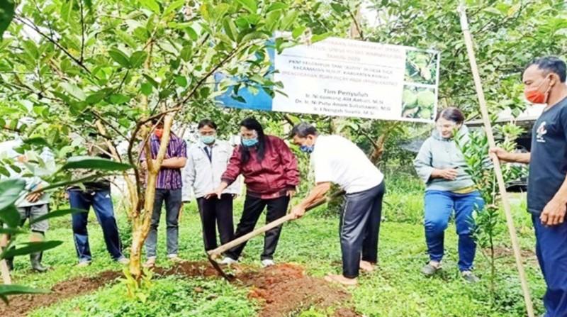 www.nusabali.com-fakultas-pertanian-universitas-warmadewa-gelar-pkm
