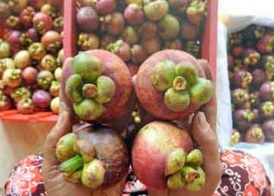 Nusabali.com - buah-bisa-bantu-pertumbuhan-ekonomi