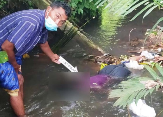 Nusabali.com - bajang-lingsir-ditemukan-tewas-di-sungai