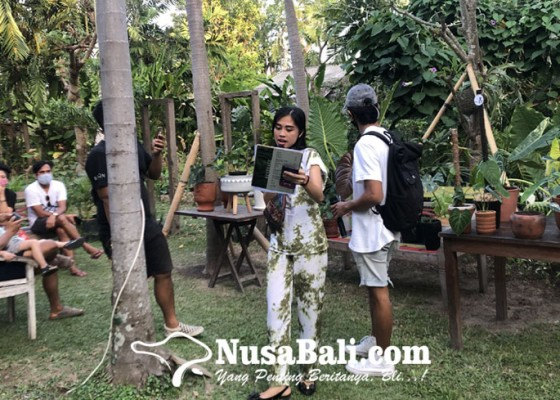Nusabali.com - berburu-beragam-jenis-houseplant-di-weekend-market