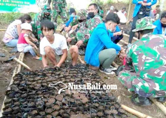 Nusabali.com - tni-semai-2500-bibit-warga-siapkan-lahan-25-ha