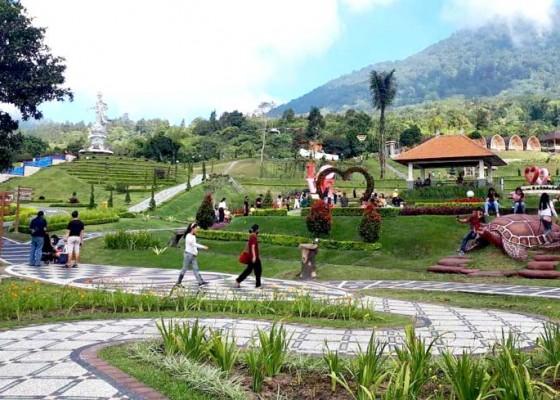 Nusabali.com - meski-belum-dilaunching-the-bloom-garden-ramai-pengunjung