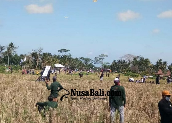 Nusabali.com - ratusan-layangan-hiasi-langit-di-ubud