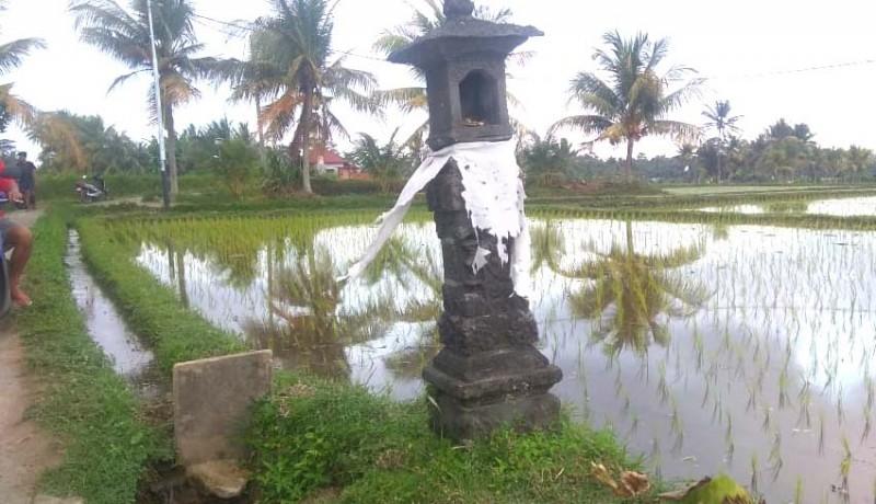 www.nusabali.com-magarang-yeh-fenomena-temurun