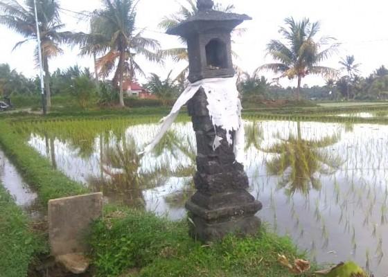 Nusabali.com - magarang-yeh-fenomena-temurun