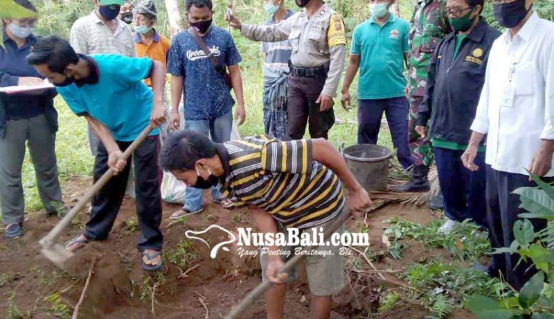 www.nusabali.com-penyuluh-pertanian-abang-bagikan-tips-kalahkan-nyungah