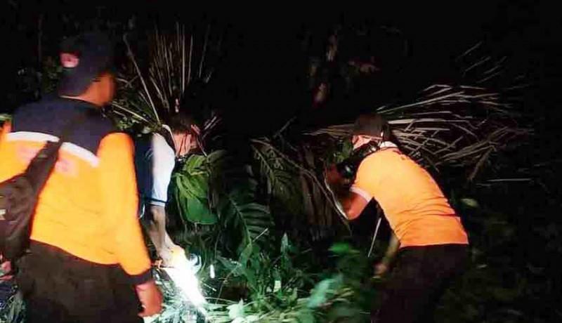 www.nusabali.com-ditiup-angin-kencang-4-pohon-tumbang