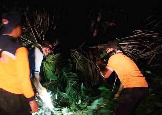 Nusabali.com - ditiup-angin-kencang-4-pohon-tumbang