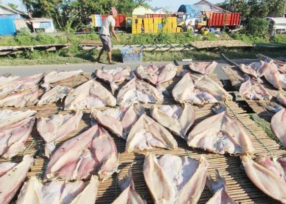 Nusabali.com - produksi-ikan-kering-di-tengah-pandemi