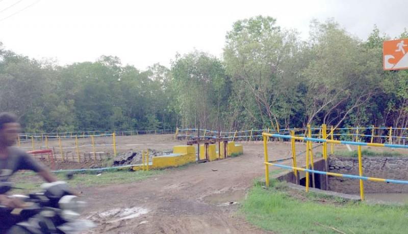 www.nusabali.com-hutan-manggrove-dibabat-dewan-geram