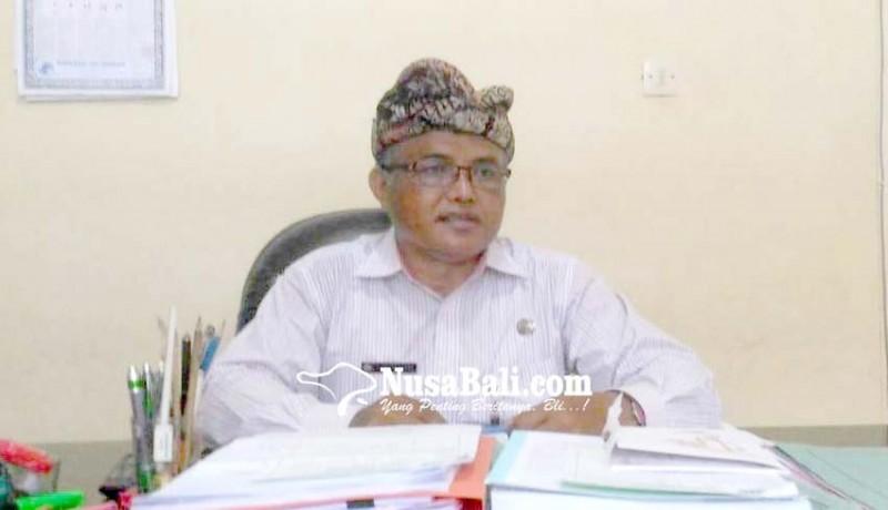 www.nusabali.com-stok-babi-hari-raya-galungan-dipastikan-aman