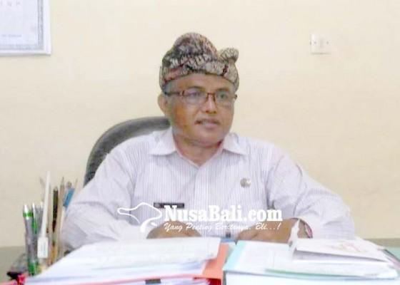 Nusabali.com - stok-babi-hari-raya-galungan-dipastikan-aman