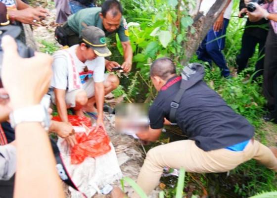 Nusabali.com - geger-mayat-bayi-teronggok-di-saluran-irigasi