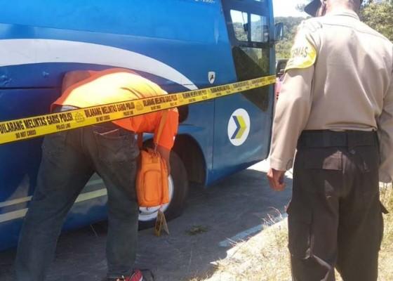 Nusabali.com - dua-bus-damri-dirusak-orang-misterius