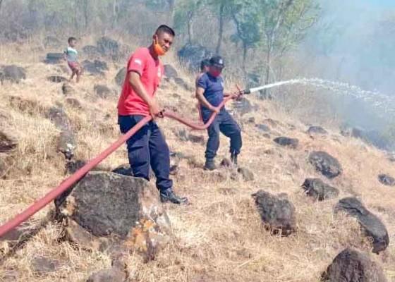 Nusabali.com - padamkam-kebakaran-bukit-jemeluk-habiskan-15000-liter-air