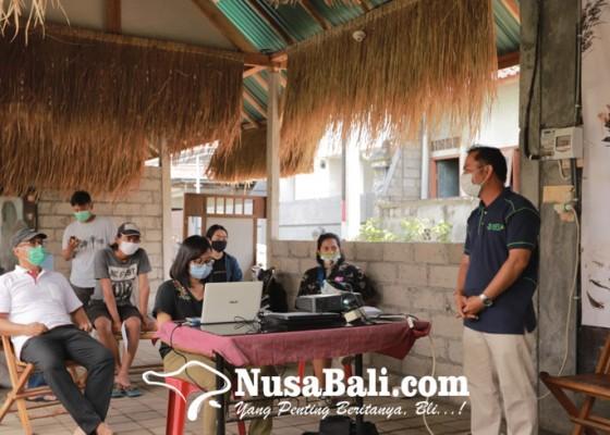 Nusabali.com - tidak-punya-sawah-tapi-mau-tanam-padi-bisa-di-halaman-rumah