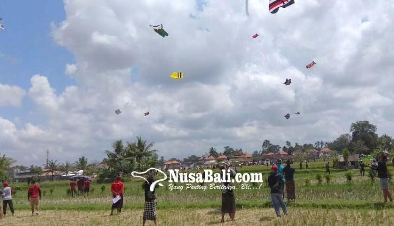 www.nusabali.com-ratusan-layangan-hiasi-langit-sayan