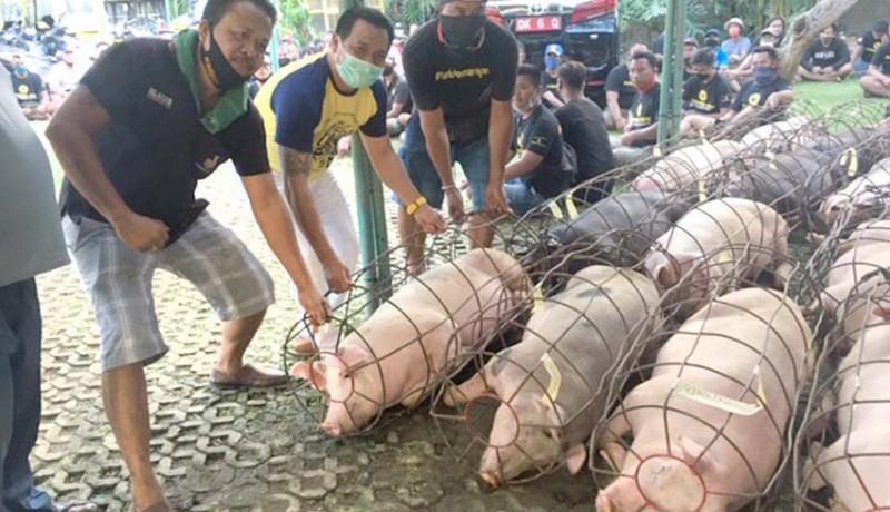 www.nusabali.com-suyasa-bagikan-35-ton-daging-babi