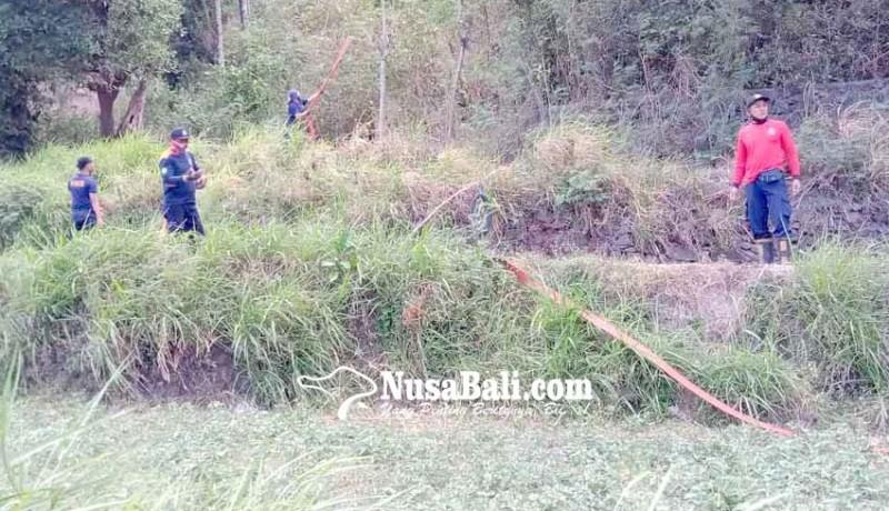 www.nusabali.com-bukit-asah-terbakar-petugas-kesulitan-ke-lokasi