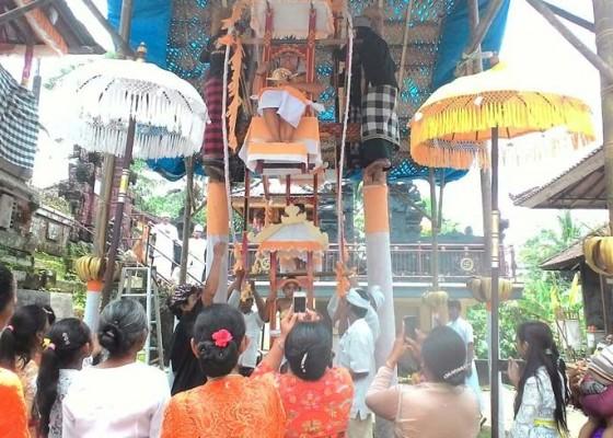 Nusabali.com - tradisi-mayunan-di-desa-tua-tabanan-diawali-penobatan-sutri