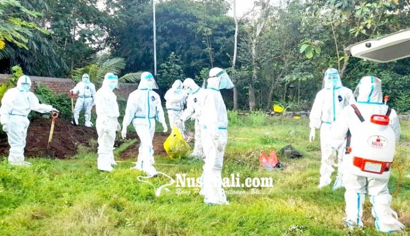 www.nusabali.com-lagi-pasien-probable-covid-19-meninggal-di-jembrana