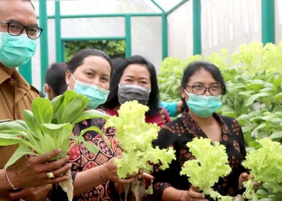 Nusabali.com - ny-seniasih-giri-prasta-harapkan-masyarakat-kembangkan-konsep-pertanian-hidroponik