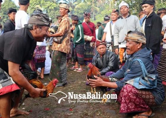 Nusabali.com - taat-prokes-covid-19-aci-keburan-di-pura-hyang-api-tetap-digelar