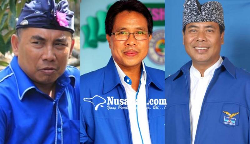 www.nusabali.com-made-sunarta-wayan-adnyana-nengah-tamba-dijagokan-menjadi-ketua-dpd-demokrat-bali