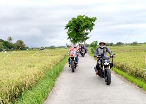 Nusabali.com - manfaatkan-jalan-subak-jadi-jalur-alternatif