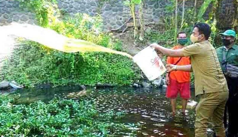 www.nusabali.com-700-liter-eco-enzim-dituang-di-tukad-buleleng