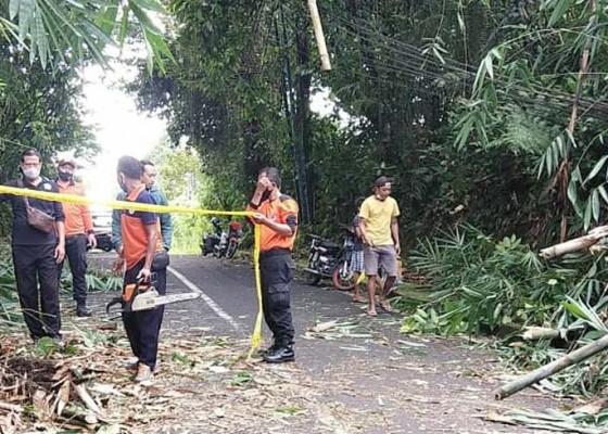 Nusabali.com - jalan-petang-luwus-tertutup-longsor-sekitar-2-jam