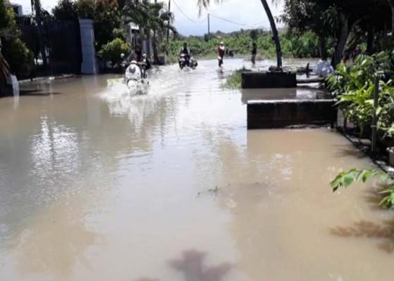 Nusabali.com - ratusan-rumah-di-pengambengan-terendam-banjir