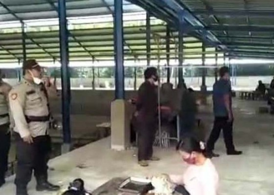 Nusabali.com - tajen-blahbatuh-dibubarkan-bebotoh-kocar-kacir