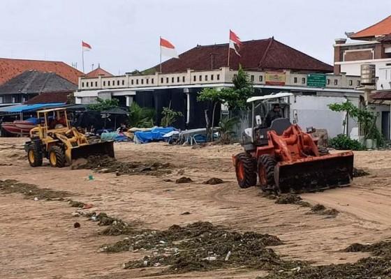 Nusabali.com - sampah-rumput-laut-mulai-berdatangan-di-pantai-timur