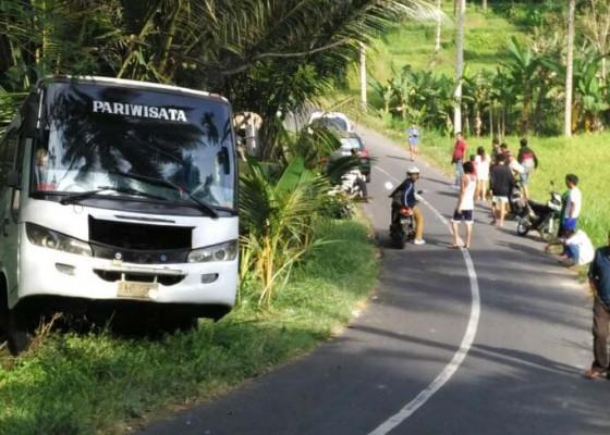 Nusabali.com - bus-pariwisata-terperosok-ke-jurang-11-penumpang-selamat